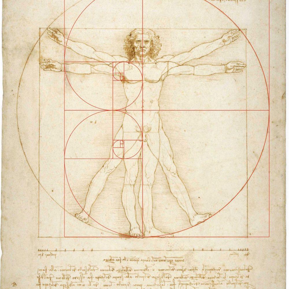 T12 Leonardo la doppia spirale logaritmica