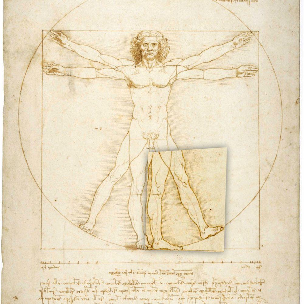 T13 uomo vitruviano specchio tra le gambe
